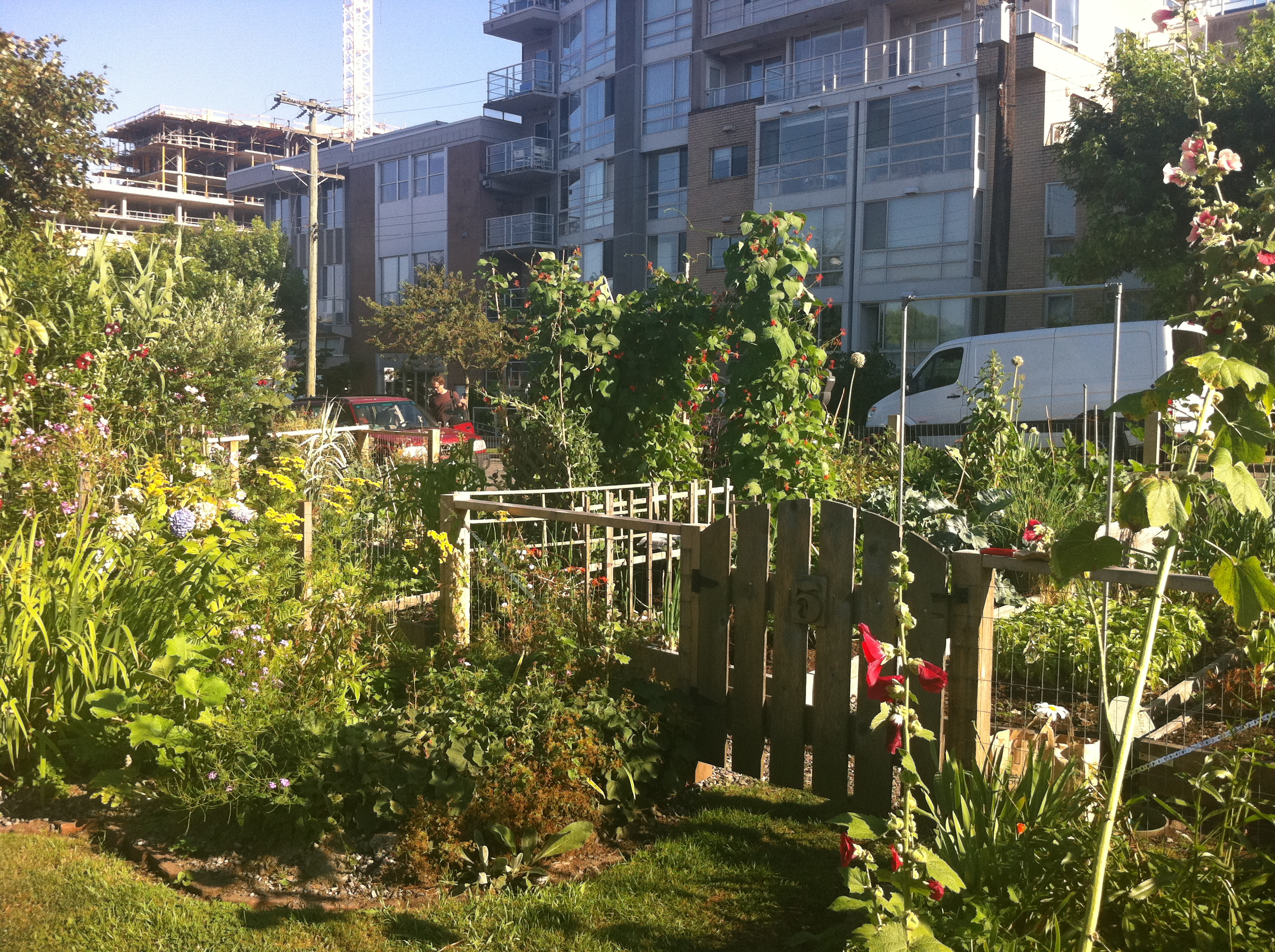 Community Gardens. Vancouver